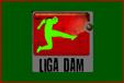Liga DAM nueva